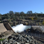 Feather River Hatchery